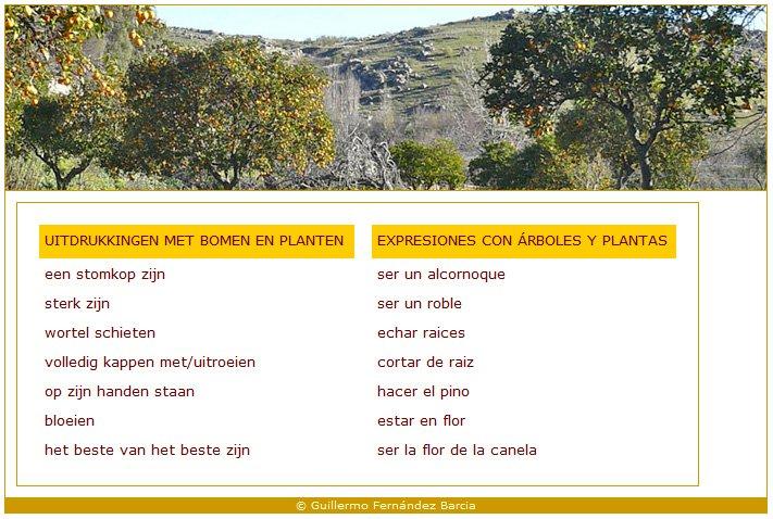 Online Spaans leren Spaanse taal en cultuur Andalusië - Binnenland en Natuur Vocabulaire