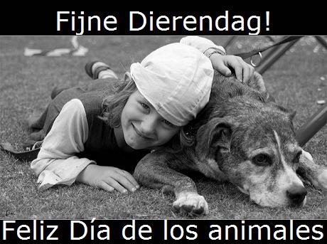 Online Spaans leren Planten en dieren Dierendag